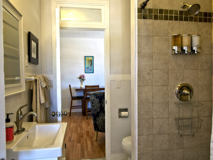 room 202 bathroom and walk in shower