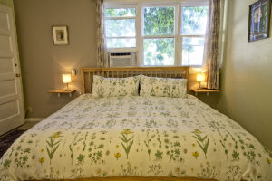 room 102 bedroom